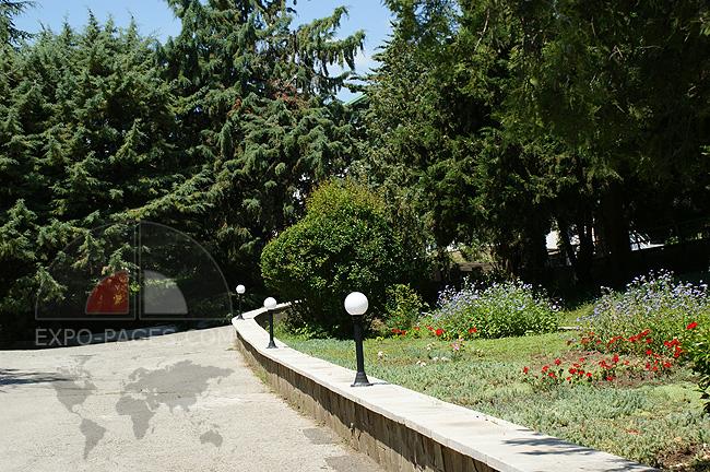 Парк пансионата Семидворье - фото