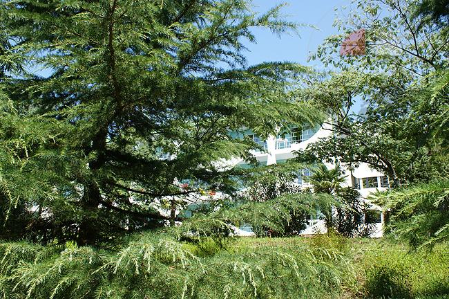 Семидворье - корпуса и домики пансионата