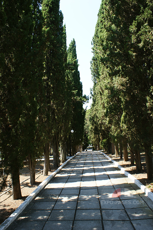 Кипарисовая аллея - комплекс Семидворье