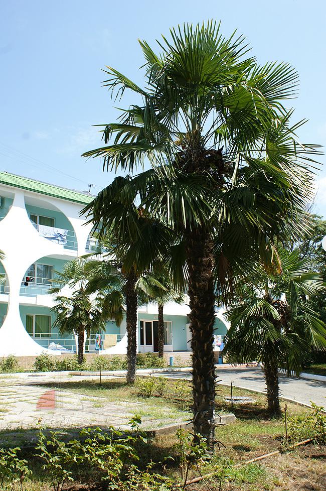 Корпус комплекса Семидворье - фото