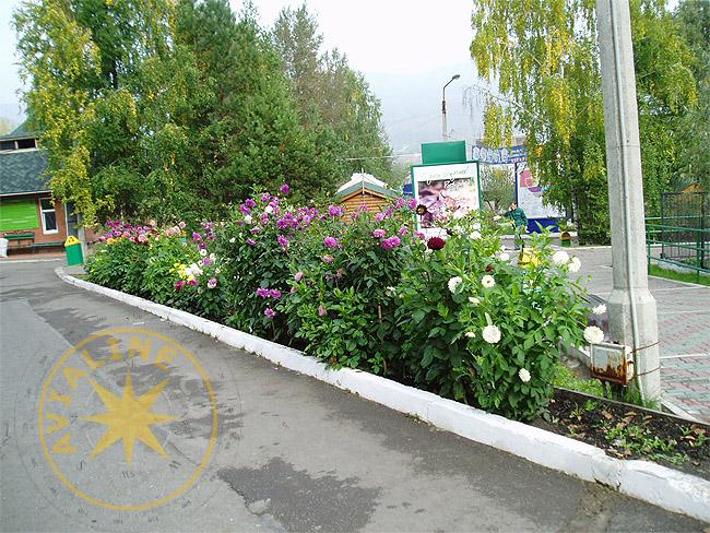 Зоопарк - Красноярск - картинки