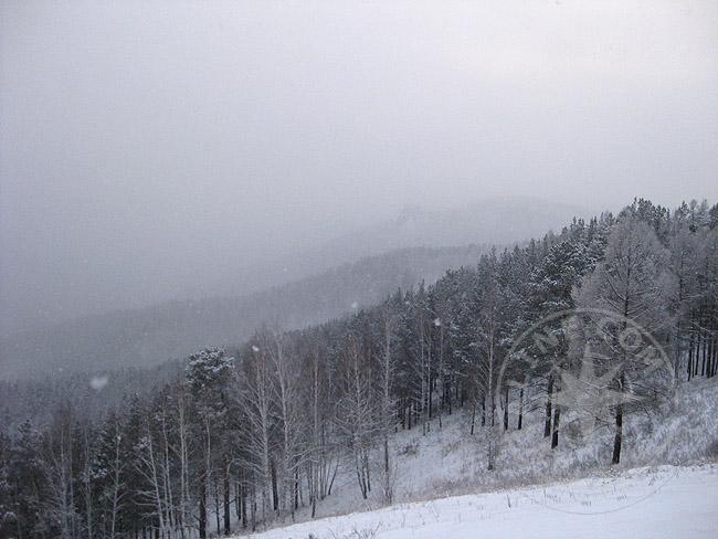 Бобровый лог - катание зимой - фото